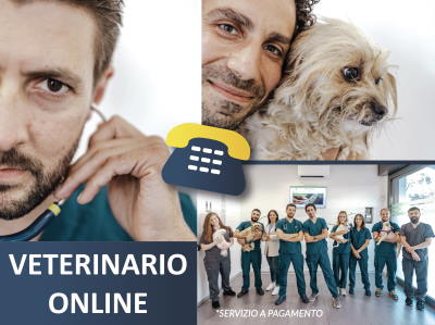 Video Consulti Veterinari on-line